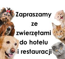 Zapraszamy ze zwierzętami do hotelu i restauracji